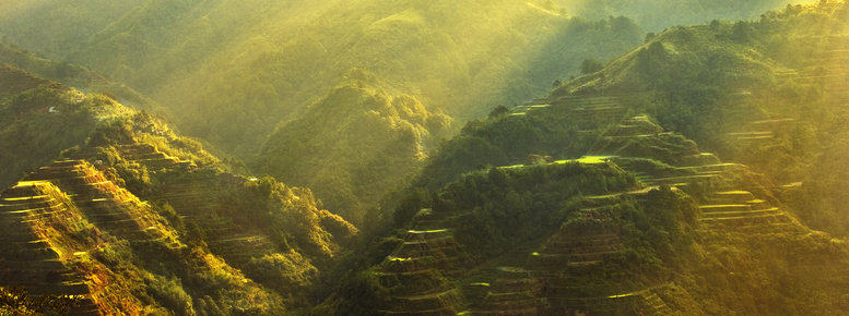 Stock photo: banaue