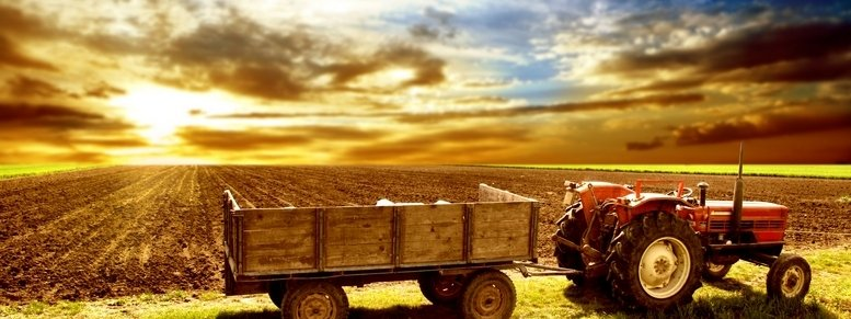Stock photo: agriculture landscaped