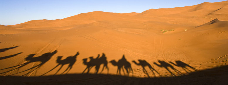 Stock photo: caravan in the sahara desert