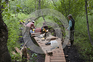 Alaska Wilderness Trail Construction