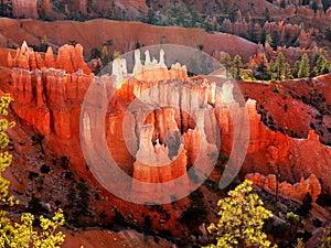 Bryce Canyon Hoodoos, Landscape Sunrise