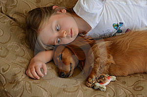 Child and a Dachshund