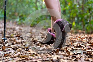 Close-up of female hiker feet and shoe walking on forest trail.