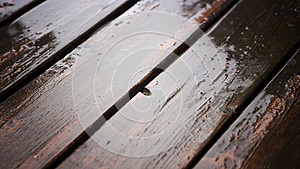 Closeup of wet wooden planks