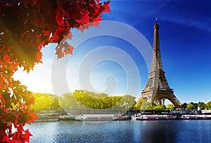 Color of  autumn in Paris