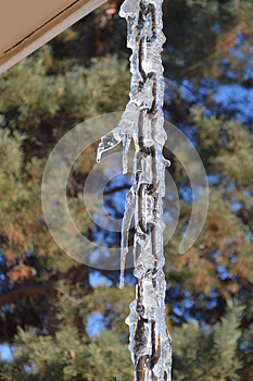 Cool icicles on a drip chain