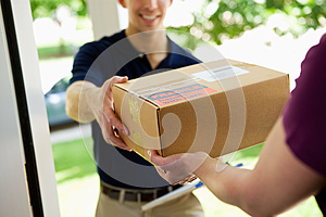 Delivery: Giving Package to Home Owner