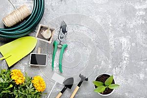 Different garden tools