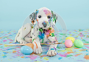 Easter Dalmatian Puppy
