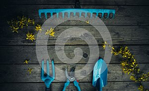 Garden tools on a wooden floor with yellow flowers