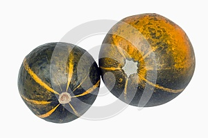 Green and Yellow Patterned Gem Squashes on White