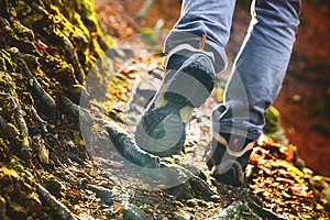 Hikers boots on forest trail. Autumn hiking.