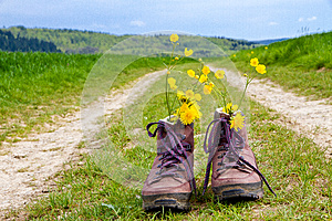 Hiking boots on a way