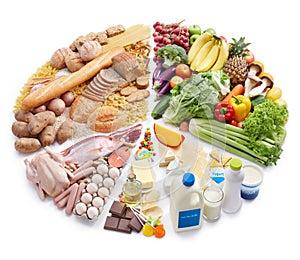 Kreisdiagramm der Nahrungsmittelpyramide