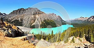Peyto Lake Panorama, Canadian Rockies, Alberta Canada