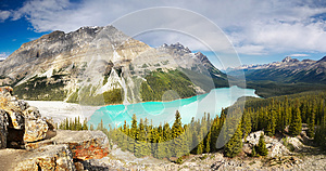 Landscape view, Peyto lake, Canadian Rocky Mountains