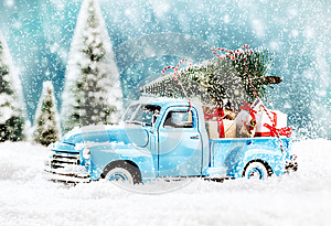 Merry Christmas tree transporter