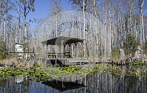 Minnies Lake Rest Dock, Okefenokee Swamp National Wildlife Refuge