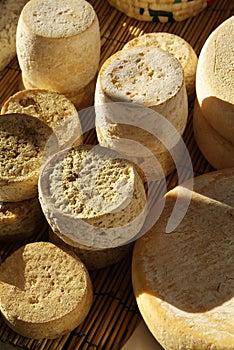 Moduli di formaggio