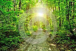 Spiritualitate, cursuri, evenimente