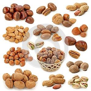 Nuts Ansammlung