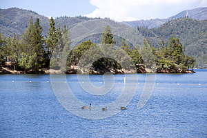 Welcome to Whiskeytown