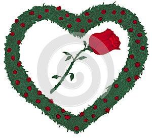 Rose Heart Rose bushes illustration