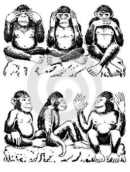 See, hear, speak no evil with variation