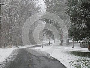 Snowstorm on the Greenbelt Boise Idaho