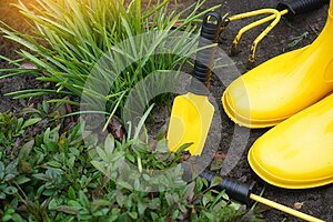 Spring garden works background with yellow garden tools and rubber boots