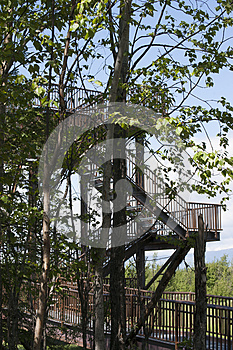 Wildlife Viewing Tower Reflections Lake Alaska
