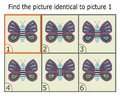 Illustration of Finding Two Identical Pictures. Educational Game for Children. Butterfly.
