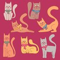 Cute colorful cats vector set