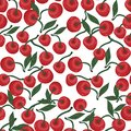 Seamless pattern of red cherries with greens, leaf on a white background