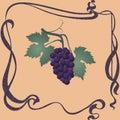 Purple grapes illustration.