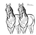 Drawing of a pair of white horses in full face