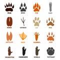 Footprints set of animal birds and mammals paw print vector Royalty Free Stock Photo