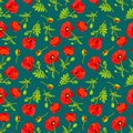 Vector illustration with poppy flowers.