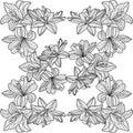 черно белый  фон симметричные лилии