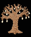 Árvore Fruit-bearing da leguminosa Imagens de Stock Royalty Free