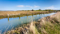 île de newtown harbour national nature reserve de wight angleterre Photos stock