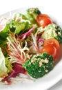 świeży sałatkowy warzywo Zdjęcia Stock