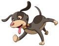 ένα σκυ ί Στοκ Φωτογραφίες
