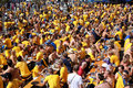 Οι οπαδοί ποδοσφαίρου έχουν την μπύρα Στοκ Εικόνες