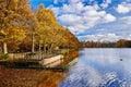 πάρκο peterhof πό εων χρυσό φθινόπωρο Στοκ φωτογραφία με δικαίωμα ελεύθερης χρήσης