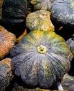 πώ ηση κο οκυθών στην τοπική αγορά Στοκ φωτογραφία με δικαίωμα ελεύθερης χρήσης