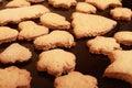Σπιτικά μπισκότα Στοκ εικόνα με δικαίωμα ελεύθερης χρήσης