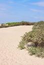 τοπίο αμμό οφων Στοκ εικόνα με δικαίωμα ελεύθερης χρήσης