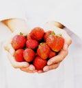 φράουλες χουφτών Στοκ εικόνα με δικαίωμα ελεύθερης χρήσης