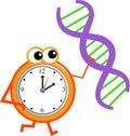 χρόνος DNA Στοκ Φωτογραφίες